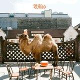 Wilco – Wilco(TheAlbum)